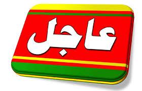 عاجل انباء عن تحديد تاريخ الاستفتاء وعن تعديل حكومي