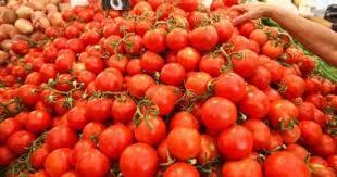 """أزمة الخضروات: ندفع ثمن """"حقنا في الكسل"""""""