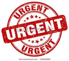 Urgent: réunion décisive au palais présidentiel